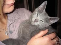 1 января 2012 года Nemo oтправился к свой новой маме Лигите!