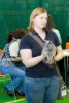 Вернулись из Таллинна! Выставка котов 25-26 августа!
