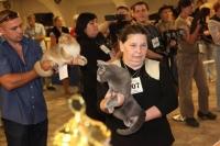 22-23 сентября в Днепропетровске Лукас и Прима Донна на Всемирной выставке кошек :)
